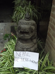 Friendly dragon, Hotel Manang, Kathmandu
